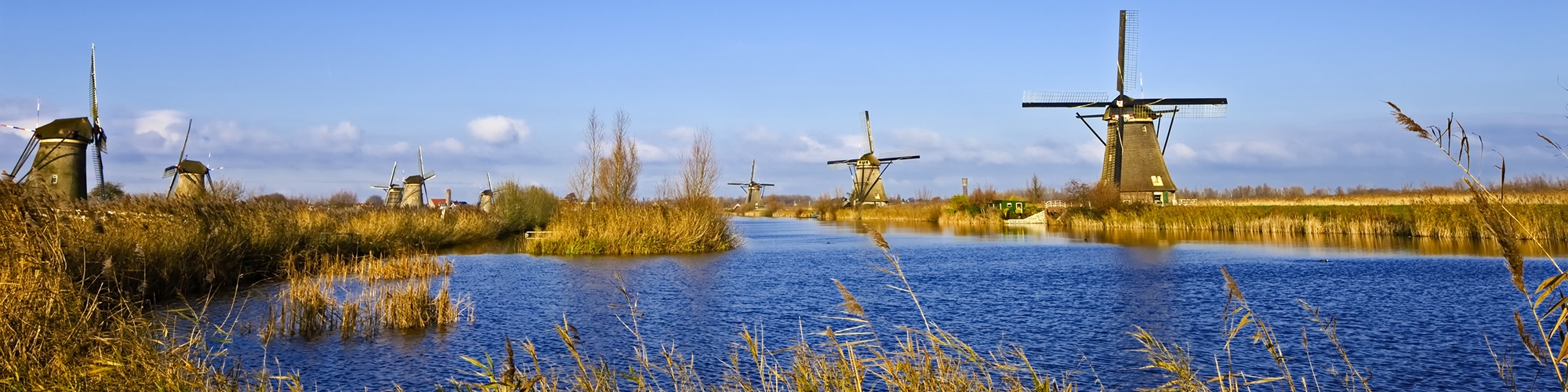 Dutch business spirit